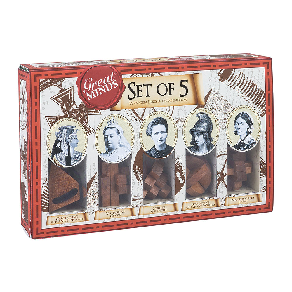 Professor Puzzle - Great Minds - Set of 5 - Women's