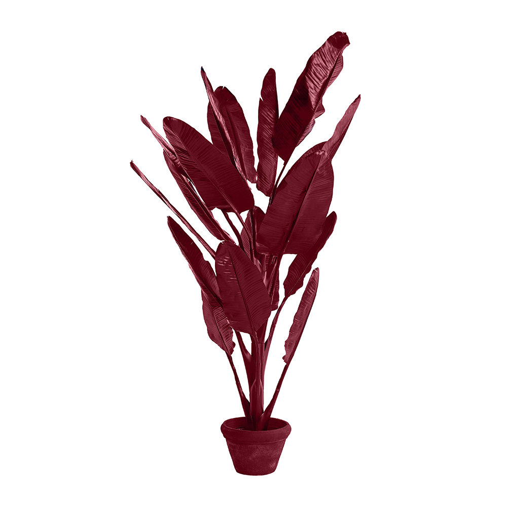 Pols Potten - Banana in Pot - Dark Red