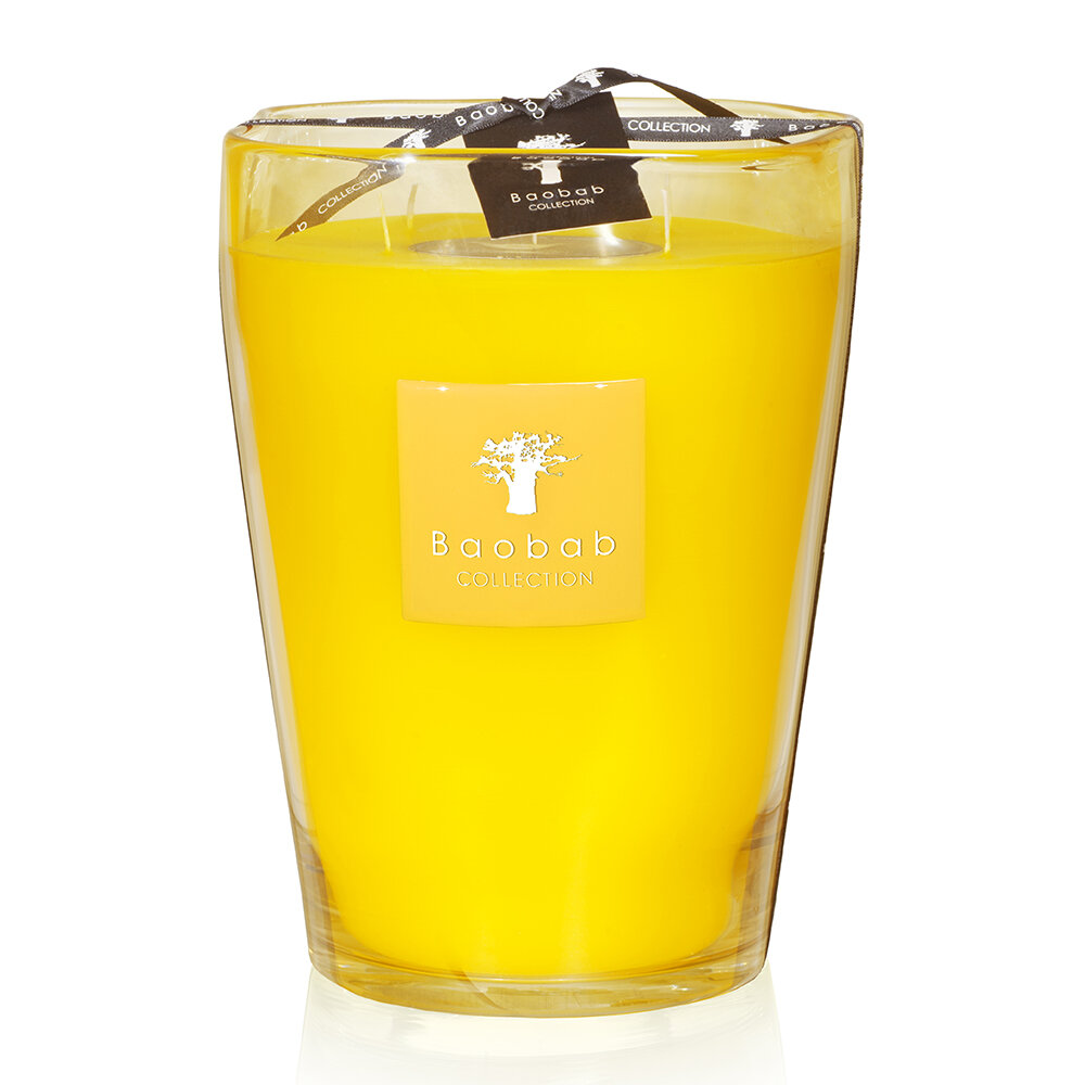 Baobab Collection - Beach Club Scented Candle - South Beach - 24cm