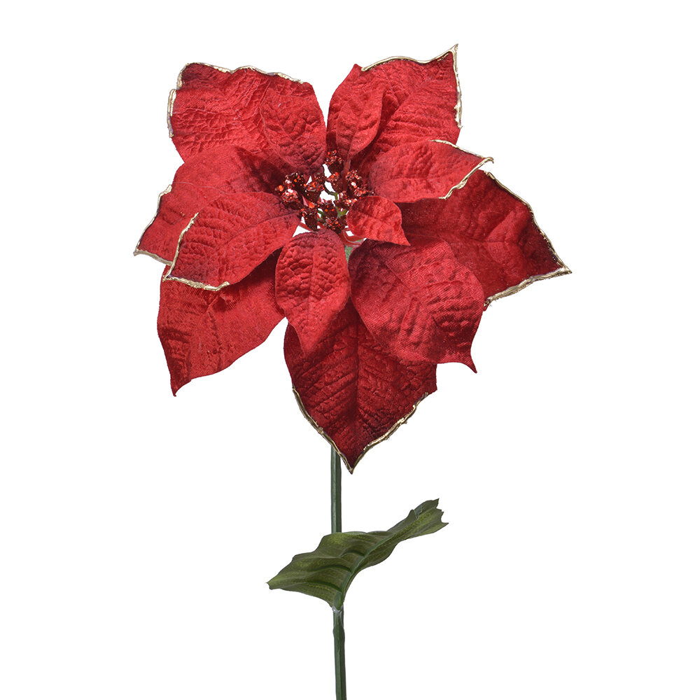 A by AMARA Christmas - Poinsettia Gold Edge Stem - Christmas Red