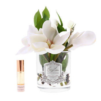 Magnolias in Glass - Clear