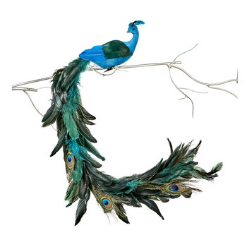 Feather Tail Clip-On Peacock