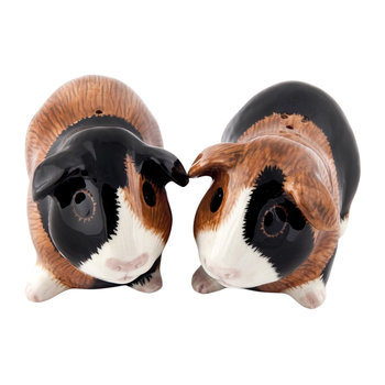 Guinea Pig Salt & Pepper Shakers - Multi