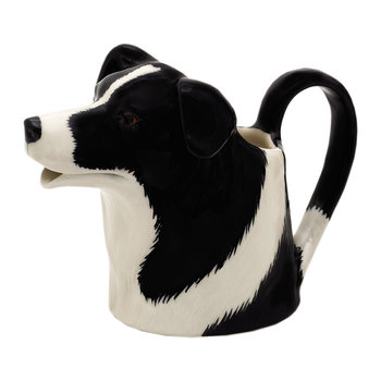 Border Collie Pitcher