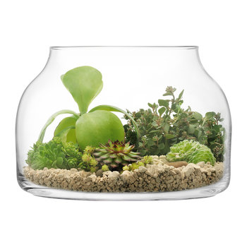 Plant Funnel Pot - Glass