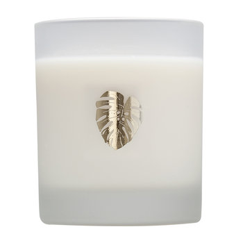Classic Soy Wax Candle - Jungle Leaf Green Lotus
