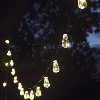Festoon Squirrel String Lights