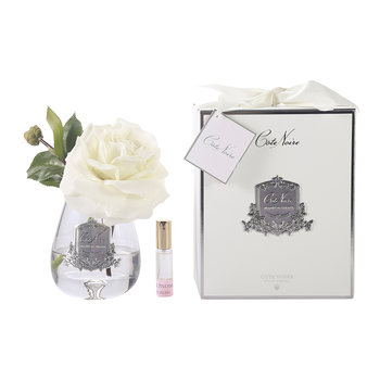 Tea Rose Ivory White - Clear Glass