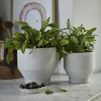 Edge Plant Pot - Light Grey
