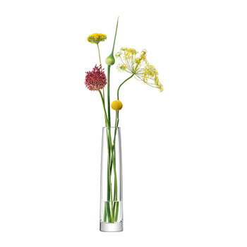 Stems Vase - Clear