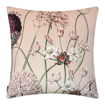 Allium Velvet Cushion - 50x50cm - Pink