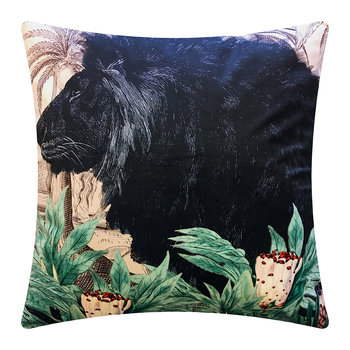 Little Lion Velvet Cushion - 50x50cm