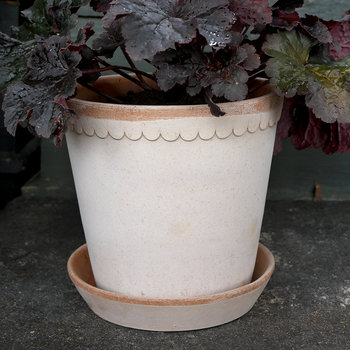 Helena Rose Tree Pot and Saucer - 14cm - Antique Rosa