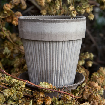 Simona Plant Pot and Saucer - Gray