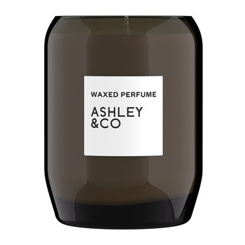 Waxed Perfume Scented Candle - 310g - Vine and Paisley