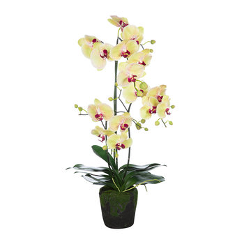Artificial Orchid Plant - Yellow/Pink