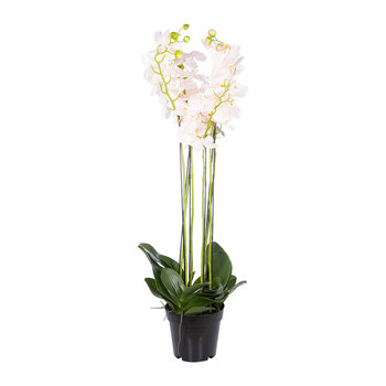 Artificial Orchid Plant - Pink