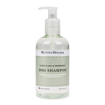 Dog Shampoo - Ylang Ylang & Peppermint