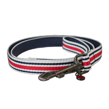Striped Dog Lead