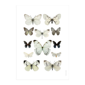 Butterflies Print - Black & White