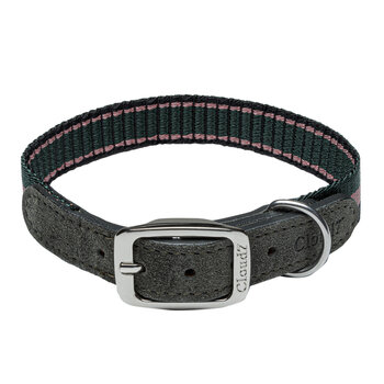 Olympia Park Dog Collar - Forest