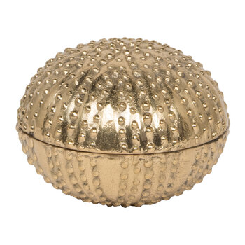 Obelia Canister Object - Gold