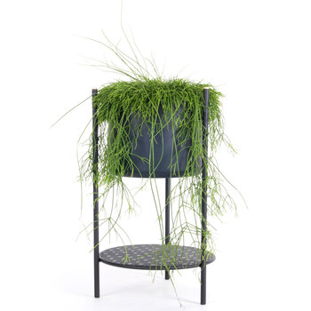 Ent Planter - Black - Small