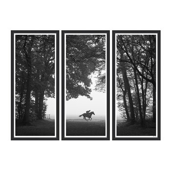 Riding Out in Chantilly Triptych Framed Print - 170x124cm