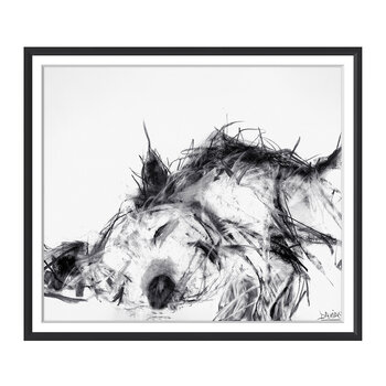 Valerie Davide Dogs - Sleeping Dog - 48x58cm