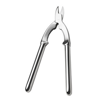 Dante Champagne Tongs