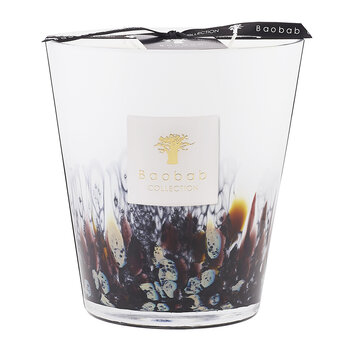 Rainforest Scented Candle - Tanjung