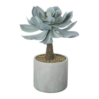 Faux Potted Echeveria - Dusky Green