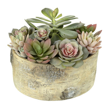 Faux Potted Mixed Succulent - Red/Green