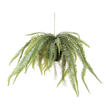 Faux Hanging Boston Fern - Green