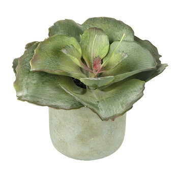 Faux Kalanchoe Potted Plant - Small