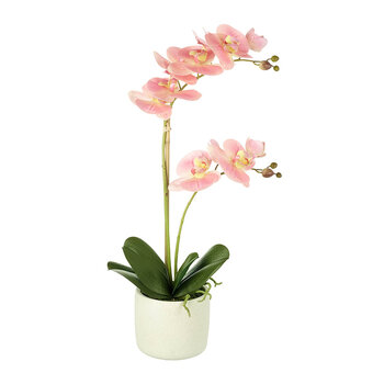 Faux Potted Phalaenopsis Orchid - Pink