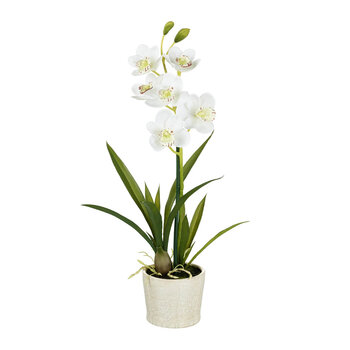 Faux Potted Cymbidium Orchid - White