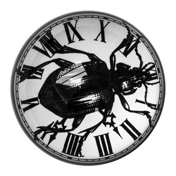Domed Paperweight - Beetle Clock