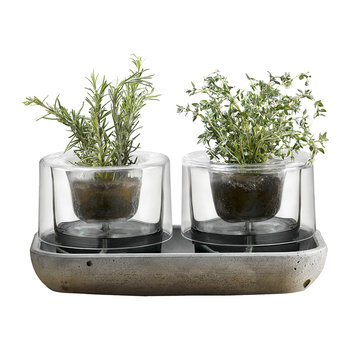 Herb Garden - Set of 2