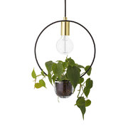 lampe-suspension-avec-support-a-plante-or