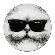 perfect-plates-cool-cat-medium