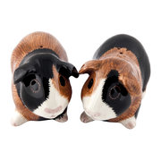 guinea-pig-salt-pepper-shakers-multi