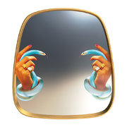 toiletpaper-mirror-hands-with-snakes