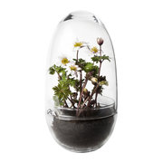 grow-greenhouse-clear-large
