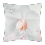 cotton-candy-bed-cushion-45x45cm-pink