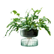canopy-self-watering-planter-22cm