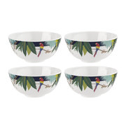 parrot-collection-melamine-bowl-set-of-4