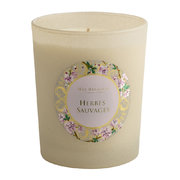 provence-scented-candle-190g-herbes-sauvages