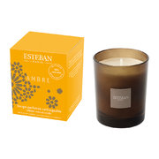refillable-scented-candle-170g-ambre