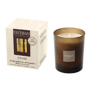 refillable-scented-candle-170g-cedre
